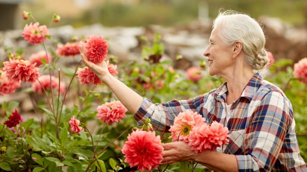 Finding your passion and purpose in retirement brings you prosperity